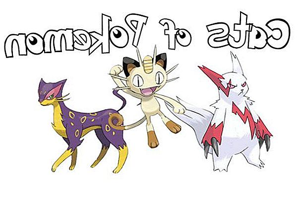 Gatos de Pokémon