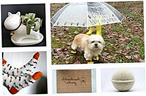 10 Custom-Crafted Pooch Produkte von Etsy