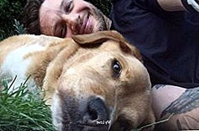 Tom Hardy'nin Furry BFF'ine Heartbreaking Tribute'i [Video]