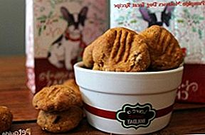 Resep Labu Molasses Dog Treat