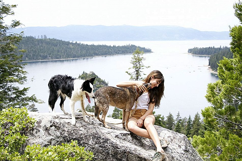 Amazing West Coast Getaways mit Ihrem Hund